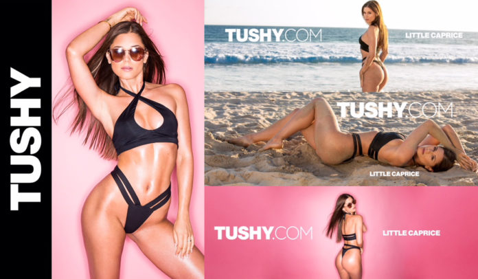 little caprice bei Tushy