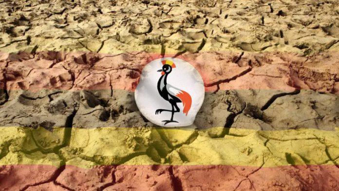 Uganda needs help